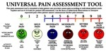 The Universal Pain Assessment Scale